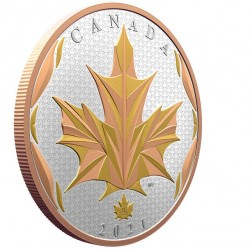 Źródło życia Republika Beninu 2017 1 Oz srebro+złoto 1000 Francs