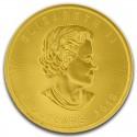 Kanonizacja Jana Pawła II 4 Kg Święty Wśród Święty 500$ 2014